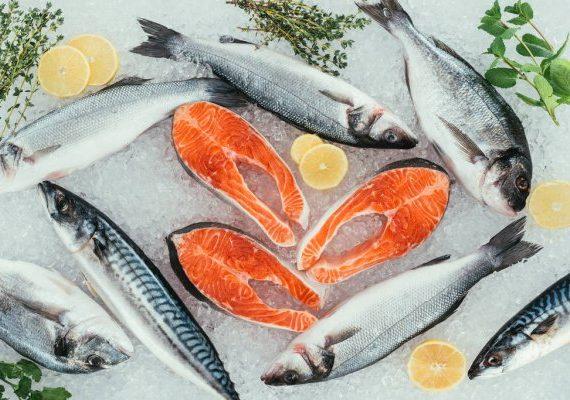 Fish - Salmon (1)